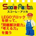 scole_bnr(125_125).jpg